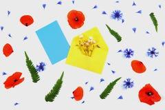 黄色信封和蓝色卡片与草甸开花,鸦片,矢车菊,绿色叶子在白色背景 免版税库存照片
