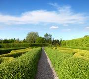 绿色修剪的花园在一个平静的庭院里 免版税库存图片