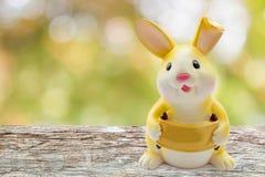 黄色兔子存钱罐 免版税库存图片