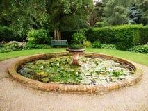 绿色公园的荷花池 库存图片