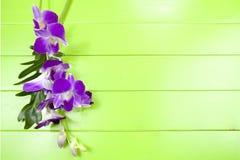 紫色兰花和叶子 免版税库存照片