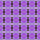 紫色兰花,花花束在无缝的盛开 皇族释放例证