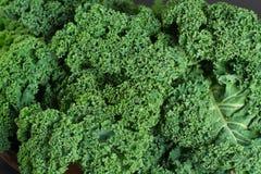 绿色冬天superfood -无头甘蓝嫩卷心菜, 免版税库存照片