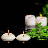 绿色分支芦笋、蕨和蜡烛温泉背景在ze 免版税库存照片