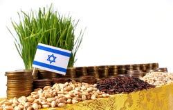 以色列沙文主义情绪与堆金钱硬币和堆麦子 免版税库存图片