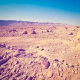 以色列沙漠 库存照片