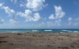 以色列海滩 库存照片