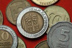 以色列的硬币 与七片叶子和两个篮子的棕榈树 库存图片