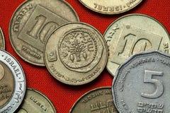 以色列的硬币 在两etrogim之间的Lulav 免版税图库摄影