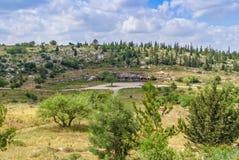 以色列风景 库存照片