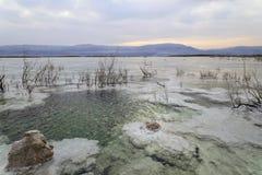 以色列 死海 黎明 水晶盐 免版税库存图片
