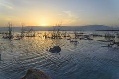 以色列 死海 黎明 图库摄影