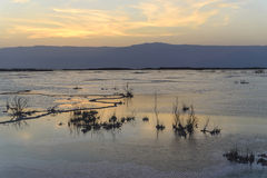 以色列 死海 黎明 免版税库存图片