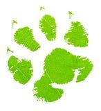 绿色动物脚印 免版税图库摄影