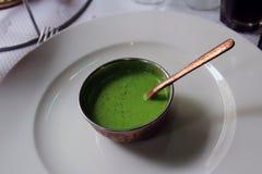 绿色印地安调味汁 库存照片
