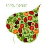 绿色叶子充满菜 向量例证