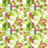 绿色叶子和莓果 无缝的模式 水彩 免版税库存照片