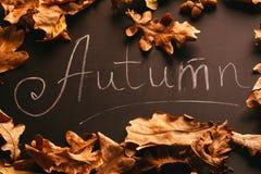 黄色叶子和题字秋天在黑板葡萄酒样式 免版税库存照片