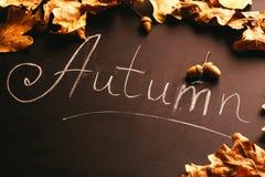 黄色叶子和题字秋天在黑板葡萄酒样式 库存照片