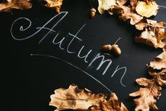 黄色叶子和题字秋天在黑板 库存照片
