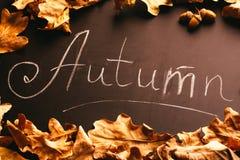黄色叶子和题字秋天在黑板 免版税库存图片