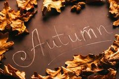 黄色叶子和题字秋天在黑板 免版税图库摄影