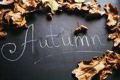 黄色叶子和题字秋天在黑板 免版税库存照片