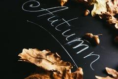黄色叶子和题字秋天在黑板 库存图片