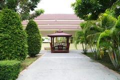 绿色叶子棕榈树 库存图片