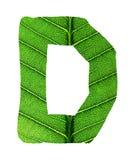 绿色叶子纹理字母表 免版税库存图片
