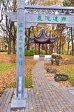 黄色叶子,拉脱维亚,里加 免版税库存照片