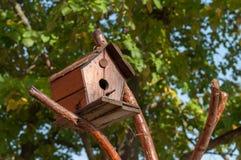 绿色叶子围拢的树的鸟房子 免版税库存图片