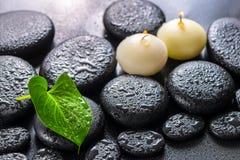 绿色叶子水芋百合的温泉在禅宗玄武岩s的概念和蜡烛 免版税图库摄影