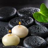 绿色叶子水芋百合的美好的温泉在ze的概念和蜡烛 库存图片