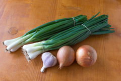 绿色和大蒜两棵葱  免版税图库摄影