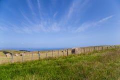 绿色和山坡与干草堆和蓝天 免版税库存照片