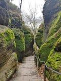 绿色和岩石 免版税库存图片
