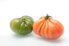 绿色和桃红色蕃茄 免版税库存图片