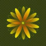 黄色和橙色几何雏菊形状 免版税库存照片