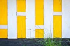 黄色和白色木墙壁 免版税库存照片