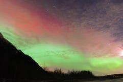 在山和树的绿色和红色极光 免版税库存照片