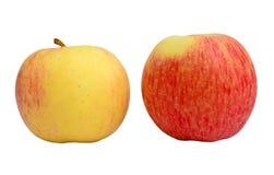 黄色和红色苹果 免版税库存照片