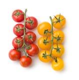 黄色和红色蕃茄 免版税库存照片