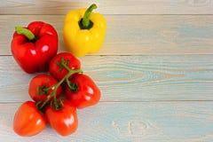 黄色和红辣椒和蕃茄在一个绿色分支 库存图片