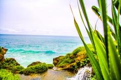 绿色和蓝色海 库存图片