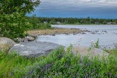 绿色和蓝色美妙的看法在海滩的北瑞典 免版税库存图片