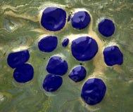 绿色和金使有大理石花纹的背景 库存图片