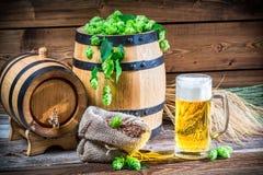 绿色和金子是啤酒的颜色 免版税库存照片