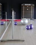 紫色和银色瑜伽球 免版税库存图片