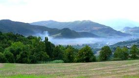 绿色和雾 库存图片
